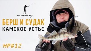Ловля берша и судака в Камском Устье: НР#12