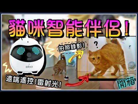 魚乾介紹的智慧貓伴侶 其實是可移動式的監視器