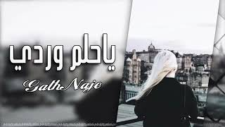 تحميل و مشاهدة يا حلم وردي♪♪ ويا نبض قلبي ????غنيه عراقي جديد 2018 MP3