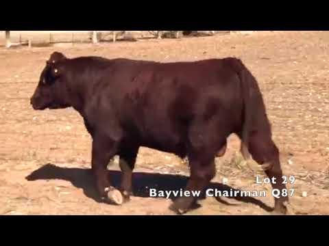 BAYVIEW CHAIRMAN Q87