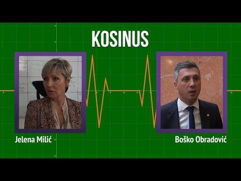 Obradović: Razgraničenje podrazumeva priznanje nezavisnog Kosova