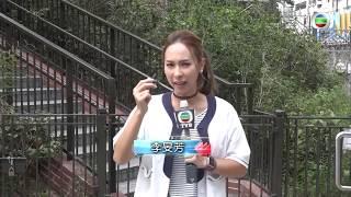 東張西望 | 街頭借錢黨大捕獲(II) | 元朗 | 騙徒手法層出不窮