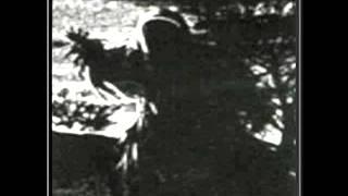 Draconian - Fallen Tears