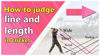 how to judge line and length of a ball [Batting Tricks Cricket]