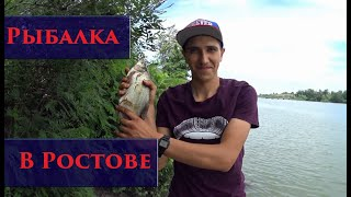 Рыбалка в аксае на берегу дона