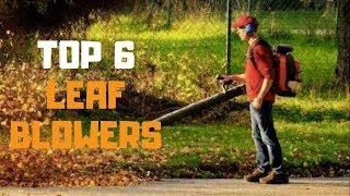 Best Leaf Blower in 2019 - Top 6 Leaf Blowers Review