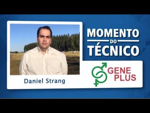 Momento do Técnico Daniel