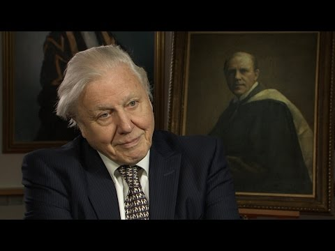 Sir David Attenborough - Was Your Father Proud of Your Career?