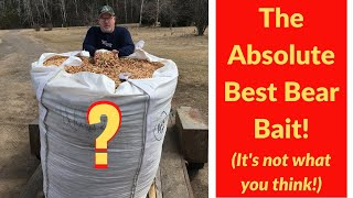 The Absolute Best Bear Bait in Bear Hunting