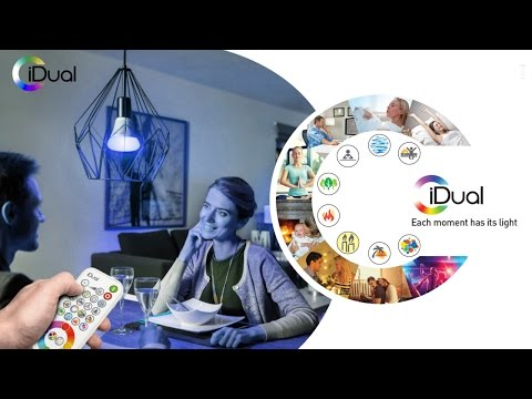iDual - LED Lighting Effects