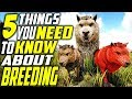 ️ TOP 5 THINGS YOU NEED TO KNOW ABOUT BREEDING IN ARK Ark Survival Evolved Breeding Tips