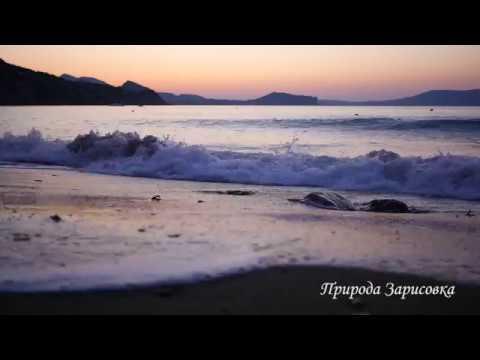 Шум моря. Морской прибой. Волны. Морской бриз. Море. Черное море. Релакс. Природа.