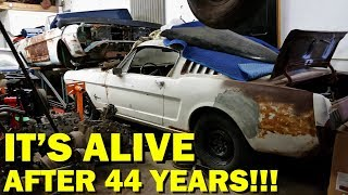 Forgotten 1965 Mustang First Start in 44 Years, Fastback Revival Part 3!