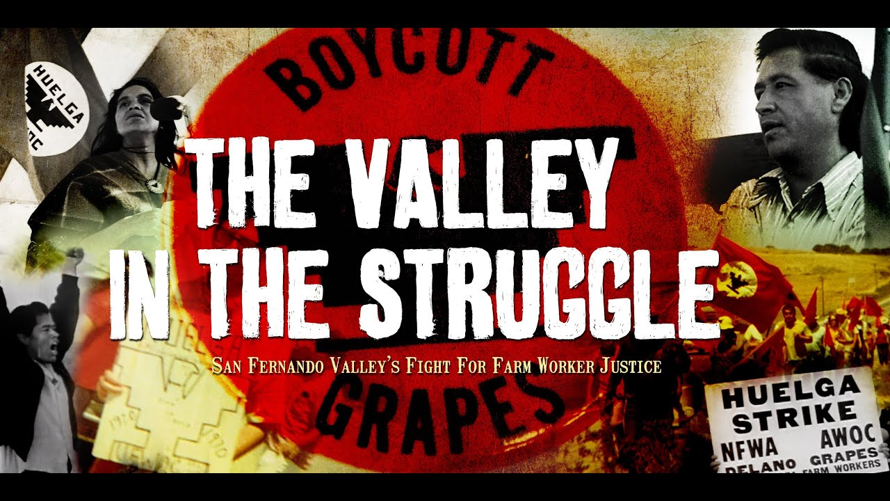 The Valley In The Struggle