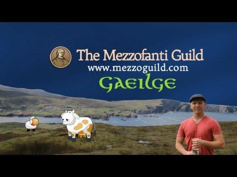 Amazing 8 Months Learning The Irish Language (Gaeilge) - Trip To The Gaeltacht In Ireland
