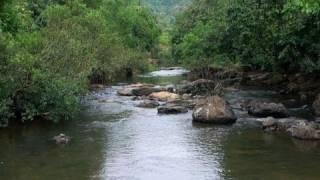 Holy Souparnika River