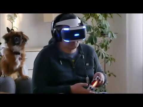 Test PS4-VR-Brille mit Hund