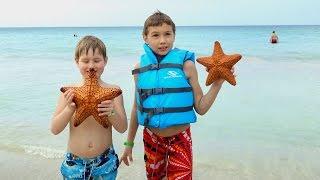 Look! A Real Starfish!... Смотри! Настоящая морская звезда!