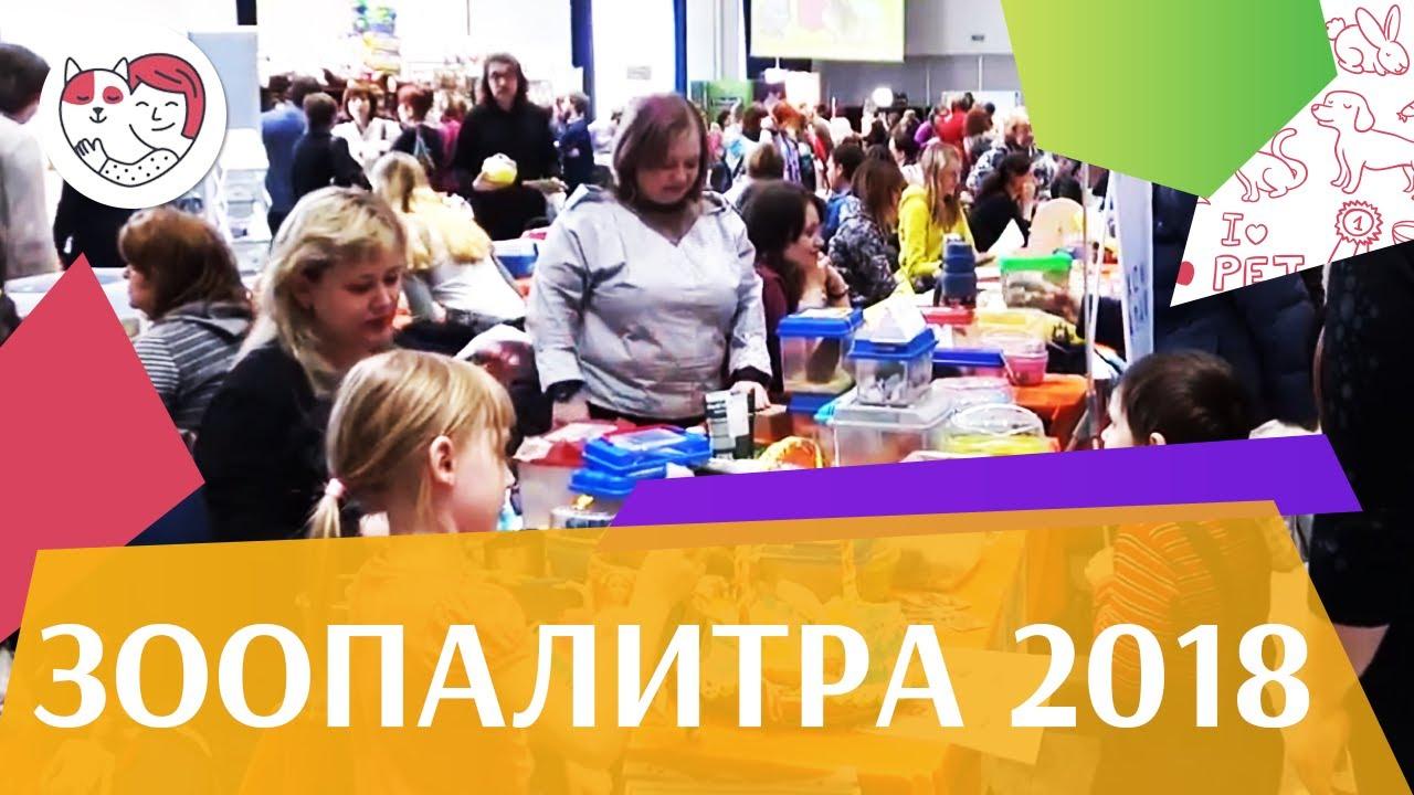 Международная выставка «Зоопалитра» на ilikepet