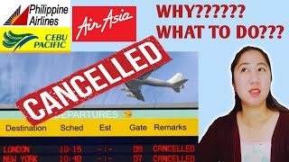 CANCELLED FLIGHT REASON AND CHOICES   CEBU PACIFIC,AIR ASIA AND PHILIPPINE AIRLINES