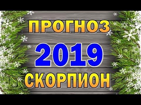 Таро прогноз (гороскоп) на 2019 год - СКОРПИОН
