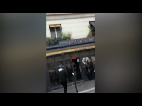 Macron adviser beats up protesters