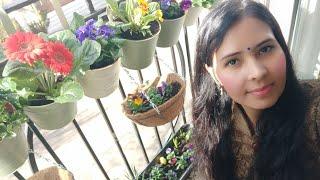 My New Balcony Garden Overview . Happy Holi/ Organic Gardening Landscap