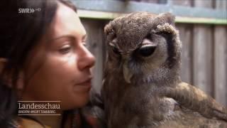 Vanessa Müller mit Eule Bruce - Falknerin aus Leidenschaft | Gast in der Landesschau