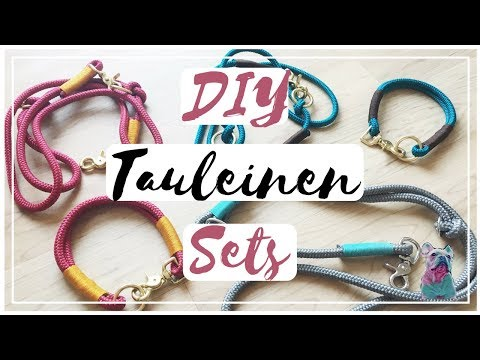 DIY TAULEINE + TAUHALSBAND für den HUND | frenchbulldog.bruno