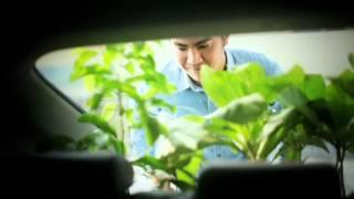 Lốp Michelin - Energy XM2 - Lốp tiết kiệm nhiên liệu
