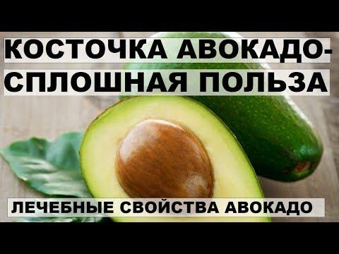 КОСТОЧКА АВОКАДО- СПЛОШНАЯ ПОЛЬЗА. Лечебные свойства авокадо