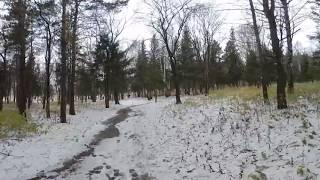 Лес первый снег 4K 360 видео