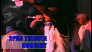 Yukmouth - still ballin' (live performance) (2pac tribute).mpg