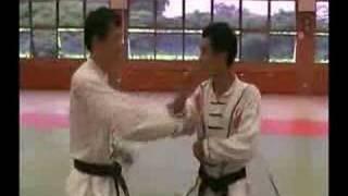 Nam Wah Pai Martial Arts