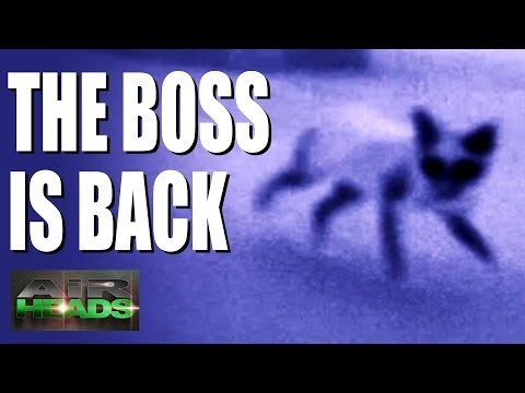 AirHeads – The FX Boss is Back