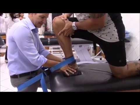 Tratamentul artrozei Kalanchoe