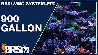 WWC's recipe for the iconic 900gal reef - The BRS & WWC hybrid system Ep2 | BRStv