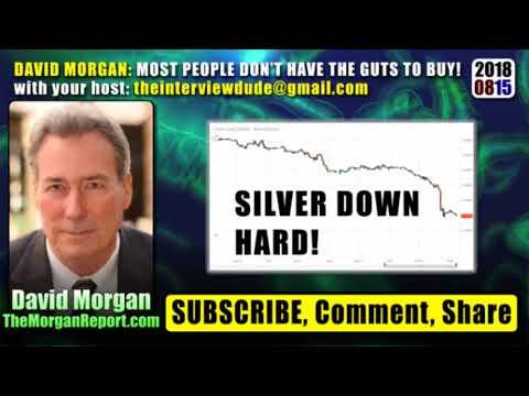 David Morgan on the Metals Mayhem