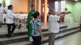 Canto de Ofertório - Missa do 32º Domingo do Tempo Comum (11.11.2018)