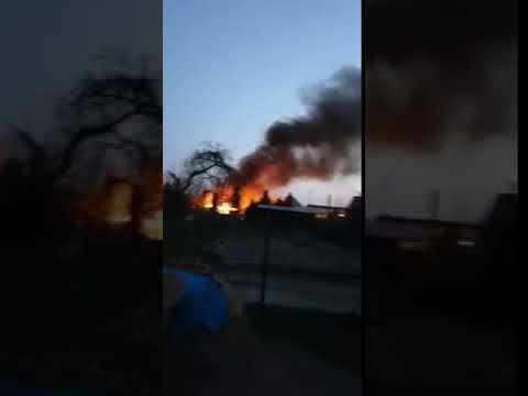 Wideo1: Pożar folii z sadzonkami w Wijewie