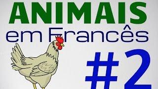Vocabulário: Animais em francês - parte 2