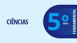 5° Ano EF I – Ciências – Ações sustentáveis: O que já fazemos?  – 10/12/2020