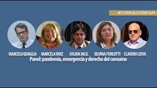 Panel: pandemia, emergencia y derecho del consumo.