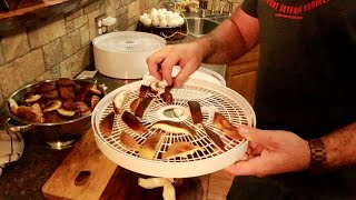 Testing The Cheapest Food Dehydrator On Amazon...lets Try Mushrooms