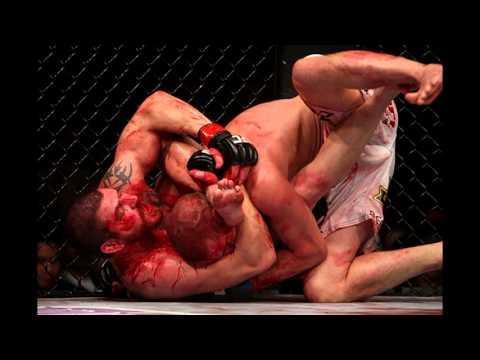 Мир MMA. Гладиаторы современности