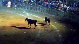 preview picture of video 'Calkini - Feria de la Colonia de Fatima 2012'