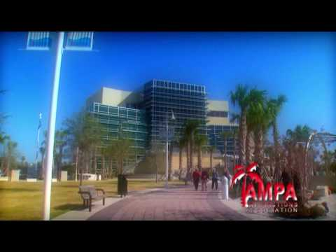 Video Tampa Attractions :60