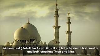 Mawla Ya Salli Wa Sallim - Muhammad Al Hasayn (Short Cover by AHS) with subtitle
