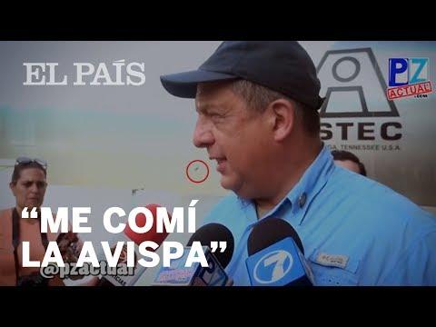El presidente de Costa Rica se traga una avispa en directo | Internacional