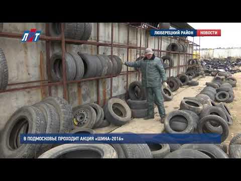 В Подмосковье проходит акция «Шина 2016»